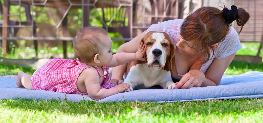 Barn, hund og mor - udendørs