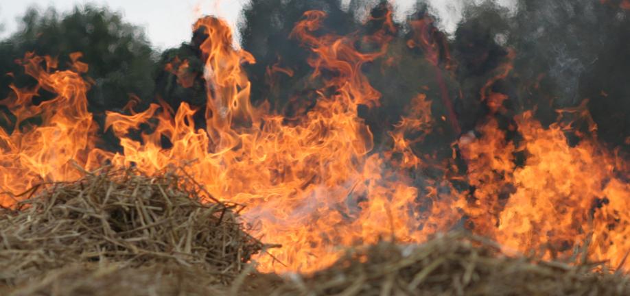 Afbrænding af halm