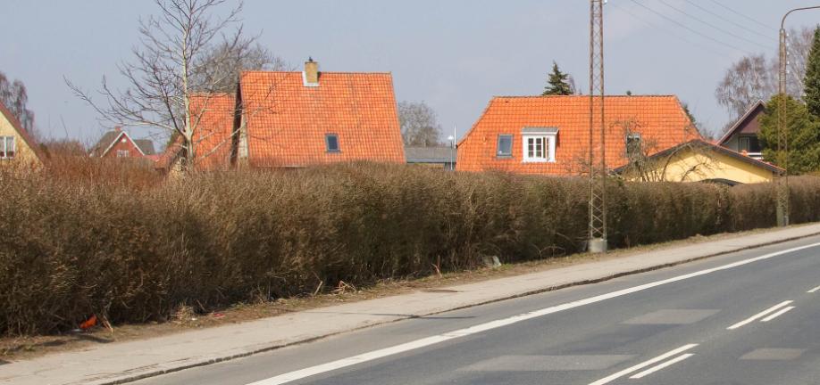 Ørbækvej