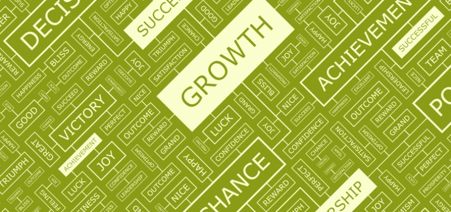 Vækststrategi